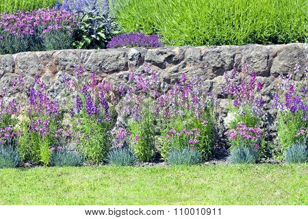 Rustic stone wall with vibrant bright flowers in bloom