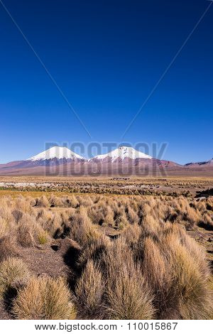 Parinacota And Pomerade Volcanos. High Andean Landscape In The Andes.