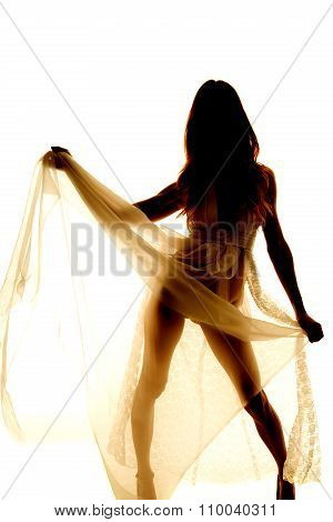 Silhouette Of A Woman In Lingerie