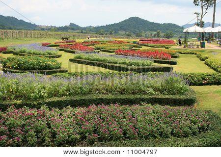 Gardens in Chonburi in Thailand.