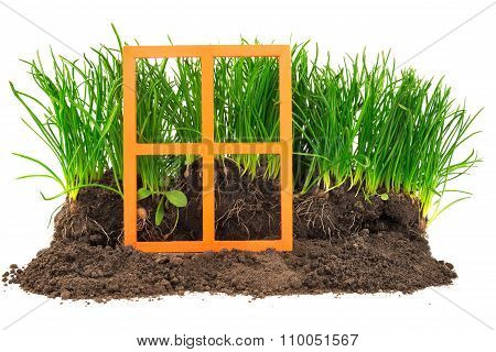 House Green Concept With Wooden Orange Window, Grass And Soil