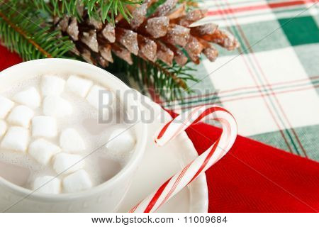 Hot Chocolate Cocoa With Candy Cane