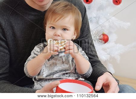 Baby Girl Eating Cookies On Father's Knees