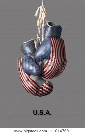 Boxing Gloves In The Color Of The Usa