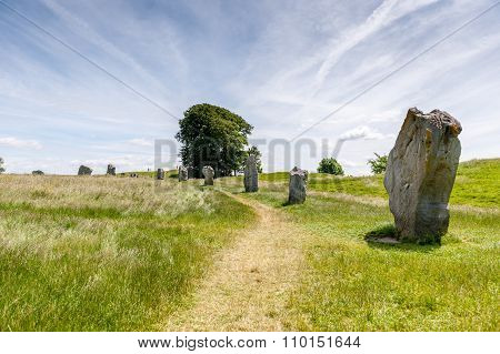 Ancient stones in field