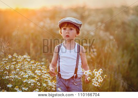 Beautiful Little Boy In Daisy Field On Sunset
