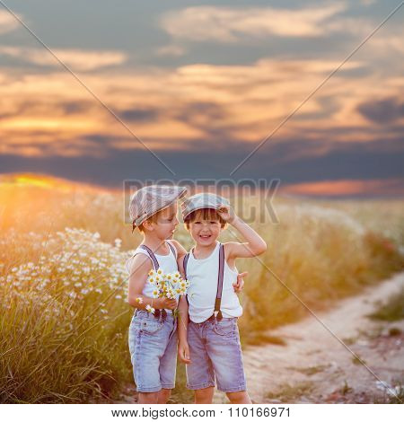 Two Beautiful Little Children, Boys, Brothers In Daisy Field On Sunset