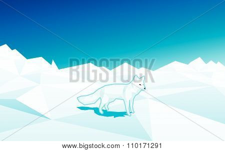 White fox in low poly style on the floe in north pole - editable polygonal vector illustration.