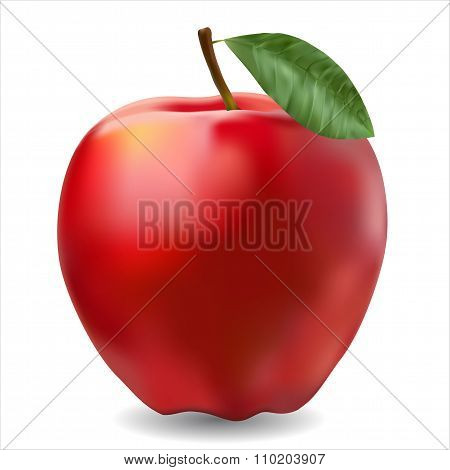 Red Ripe Apple Photorealistic