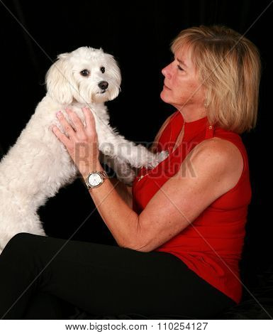 A beautiful woman holds and loves up her beautiful white pure breed Maltese - Bichon dog. Shot in studio against a black velvet background with studio lights. Room for your text above her head.  poster