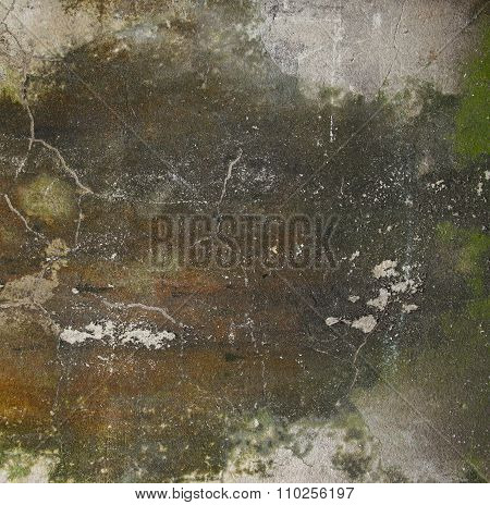 Close Up Of Old Plaster Mildewed Wall As A Grunge Background
