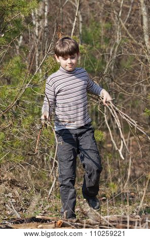 Little Boy Carrying Firewood In A Forest