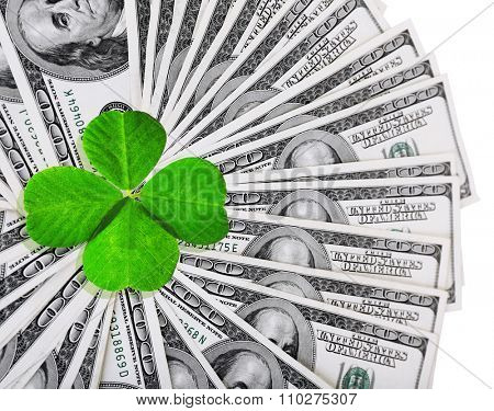 Clover leaf and dollars on white surface