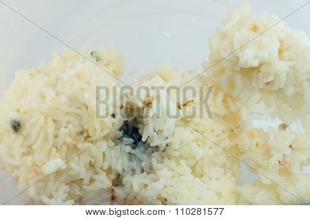 Rotten Rice In Plasstic Box