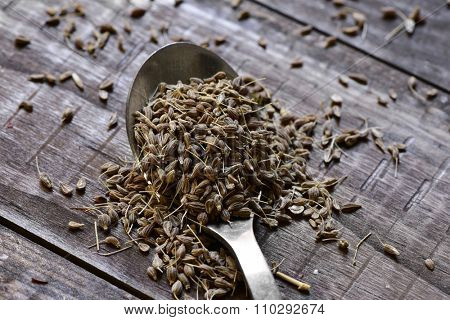 closeup of a spoon with some anise seeds on a rustic wooden table