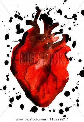 Abstract Aquarelle Human Red-blood Heart