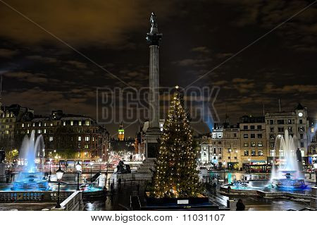 Trafalgar Square, London, England, Uk, At Night, With Norwegian Christmas Tree.
