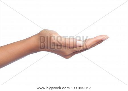 womans hand open hand isolated on white background