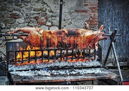 Pig On The Gridiron