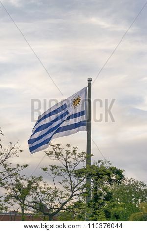 Uruguay Flag At Montevideo Flag Square