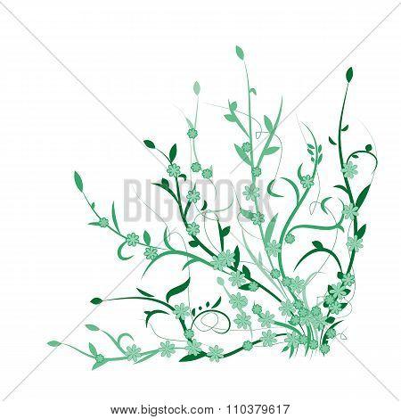 Green plants, flowers.