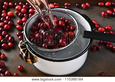 Washing cranberries to make cranberry sauce for Thanksgiving.