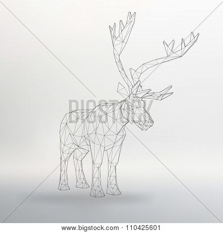 Vector illustration big tail buck. Abstract Creative concept deer vector background.