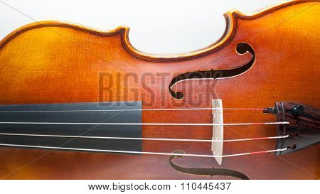 Wood Violin Body Detail  On White