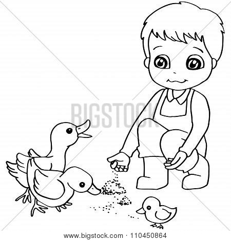 Coloring book  child feeding chicken vector