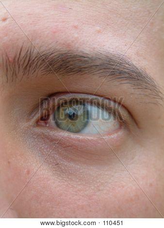 Man's Green Eye
