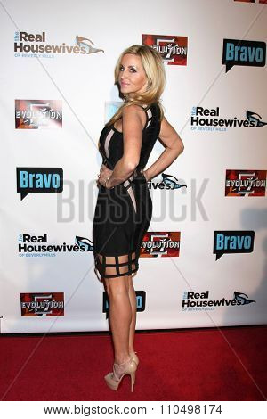 LOS ANGELES - DEC 3:  Camille Grammer at theThe Real Housewives of Beverly Hills Premiere Red Carpet 2015 at the W Hotel Hollywood on December 3, 2015 in Los Angeles, CA