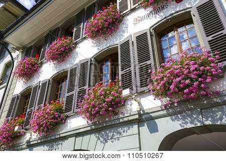 Decorated With Flowers Facade Of A House In Thun