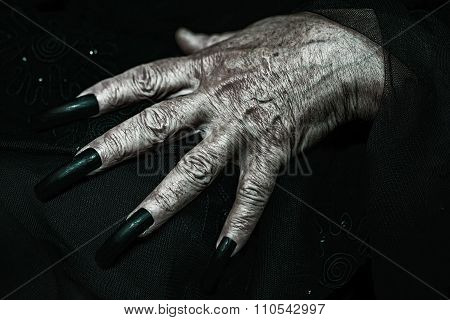 Wrinkled Hand With Long Fingernails
