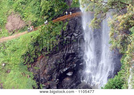 Springbrook Waterfalls 3