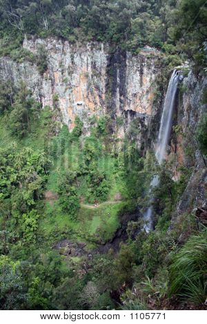 Springbrook Waterfalls 6