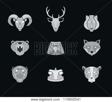 Illustration of animal predators, tiger, lion, wolf and others for web or mobile application to select userpic. poster