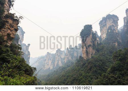 Zhangjiajie National Park ( Tian Zhi Shan ) ( Tianzi Mountain Nature Reserve ) And Fog , China