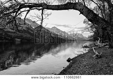 Waterton Lake Scenic View In Black And White