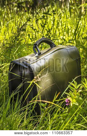 Suitcase In The Grass