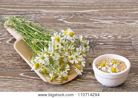 Chamomile On A Scoop