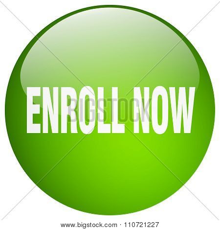 enroll now green round gel isolated push button poster