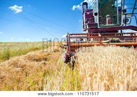 Industrial Vintage Harvesting Machinery In Wheat Crops