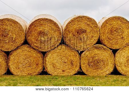 Hay bales on the field after harvest.
