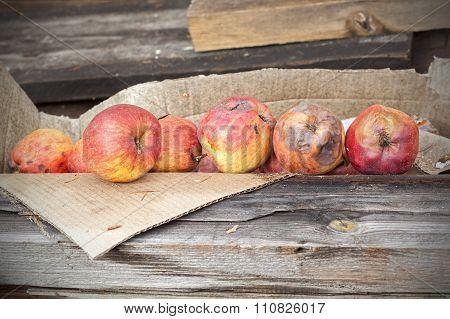 Rotten Apples In Carton On Wooden Boards
