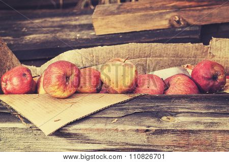 Vintage Toned Rotten Apples In Carton On Wooden Boards