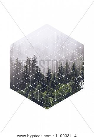 Atmospheric Scenic View of Evergreen Trees Shrouded in Heavy Mist in Hexagon Border with Geometric Line Overlay on White Background with Copy Space