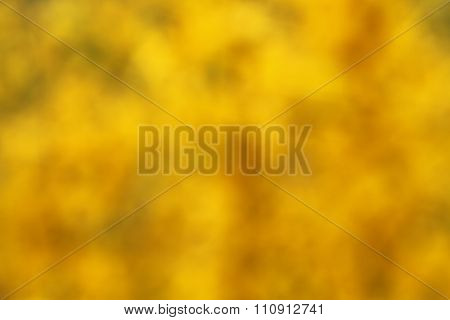 Abstract bokeh background, yellow, green and brown