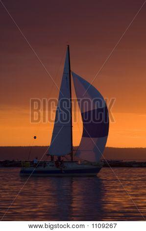 Sailboat And Washington Sunset Pct1025