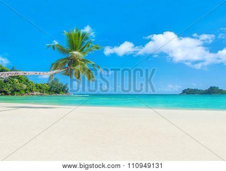 Palm Beach Baie Lazare, Seychelles, Mahe Island, Indian Ocean Paradise