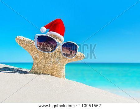 Starfish In christmas Santa Hat On Tropical Beach